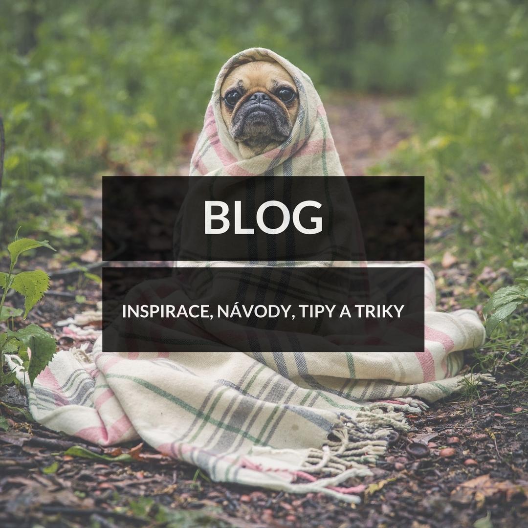 Domácí psí dobroty - Blog - inspirace, návody, triky a tipy