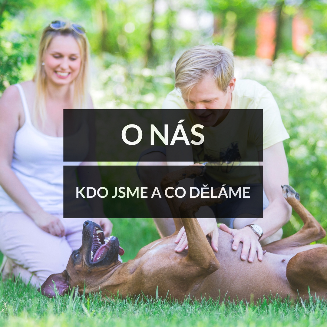 Domácí psí dobroty - O nás - kdo jsme a co děláme
