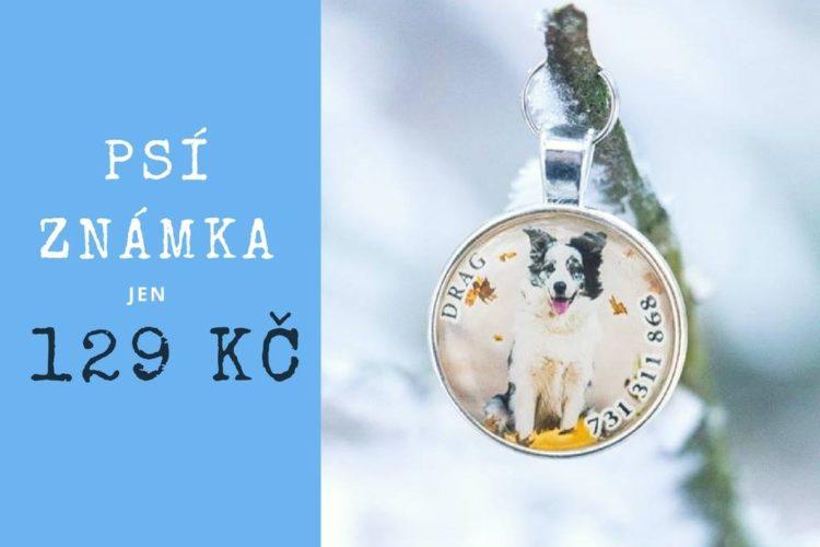 Domácí psí dobroty - zimní sleva na psi známky