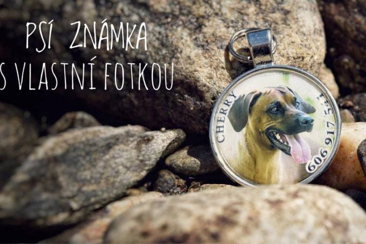 Domácí psí dobroty - Psí známka s vlastní fotkou